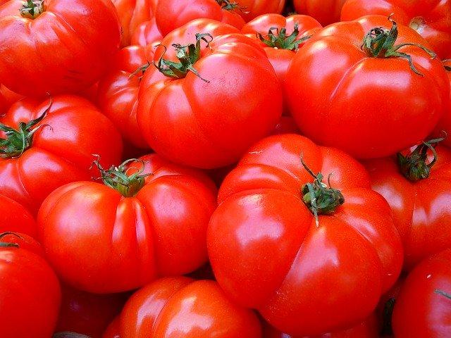 Jakie rodzaje chłodni nadają się do przechowywania owoców i warzyw