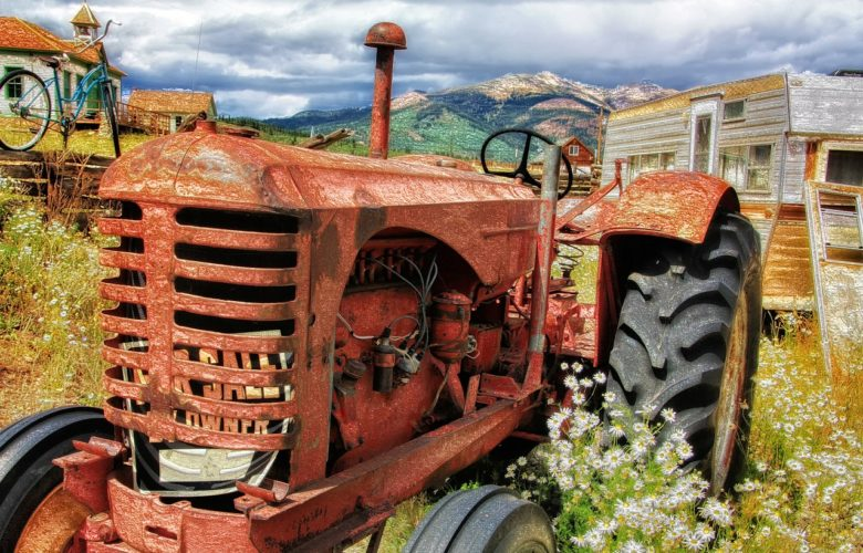 Ochrona zbóż ozimych – jakich preparatów używać?